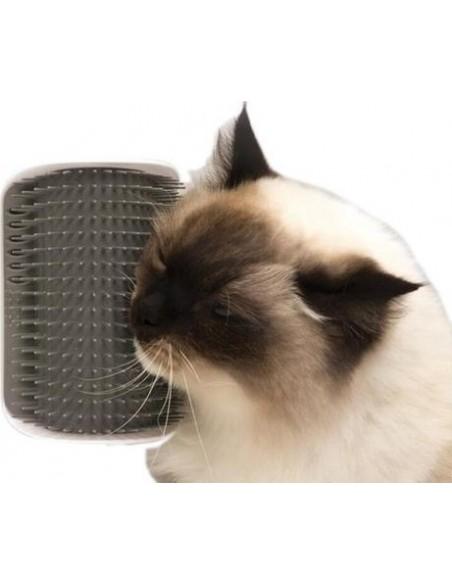 Le masseur plaisir pour votre chat (herbe à chat fournie)