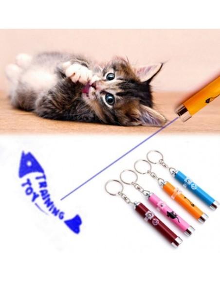 Juguete Laser Cat