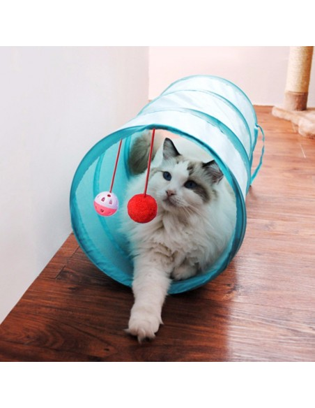 Tunnel for Cat