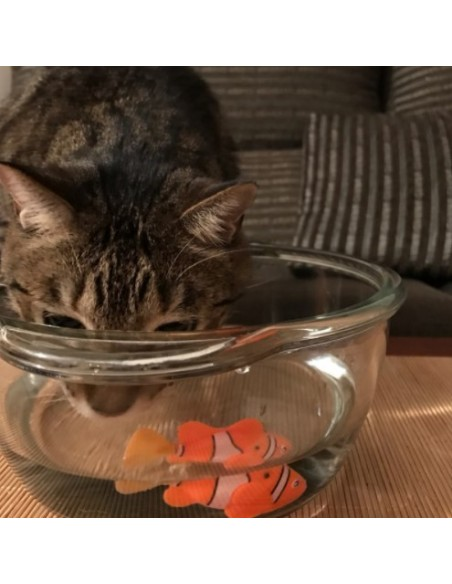 Pez nadador para felinos