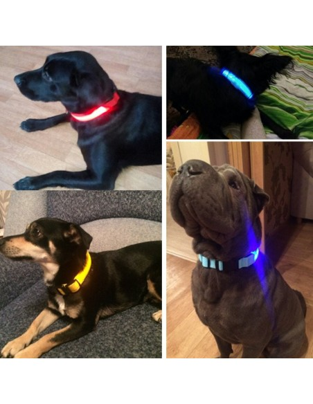 Collier LED Lumineux