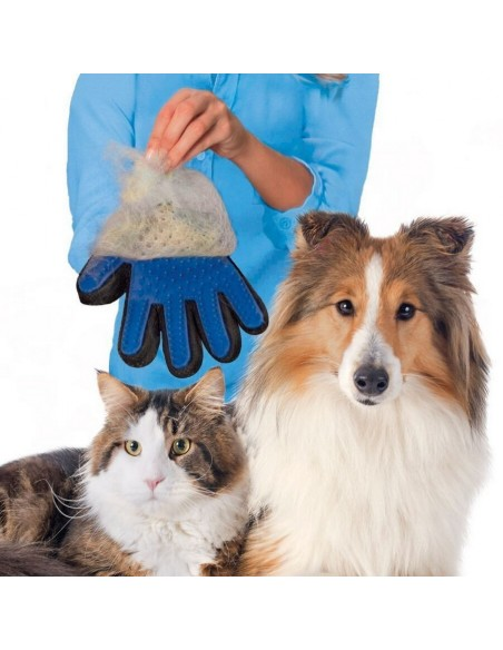 Glove catches hair dog cat